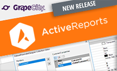 ActiveReports 12 Releases