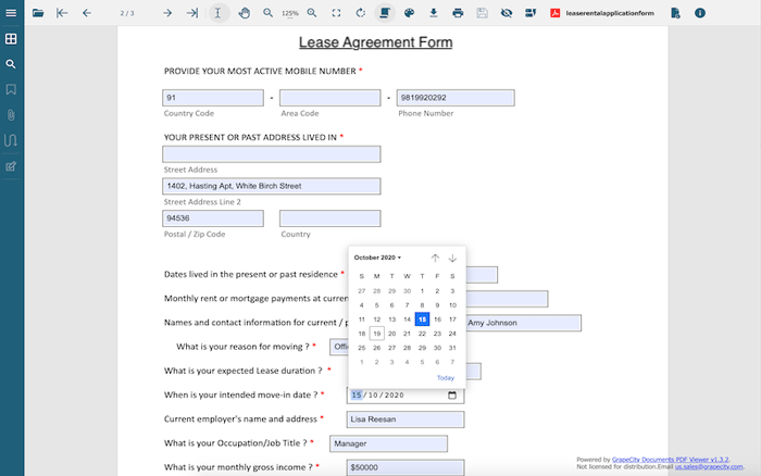 Example of new input validation types in GcExcel Templates for PDF Forms by GrapeCity