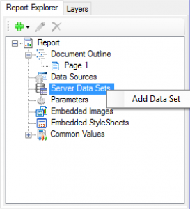 Server Data Sets in Report Explorer