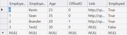 The DataTable as viewed in Visual Studio.