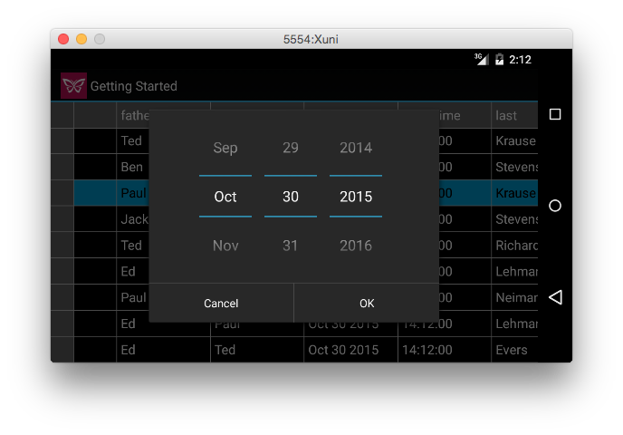 Custom Date Picker in Xuni FlexGrid for Android