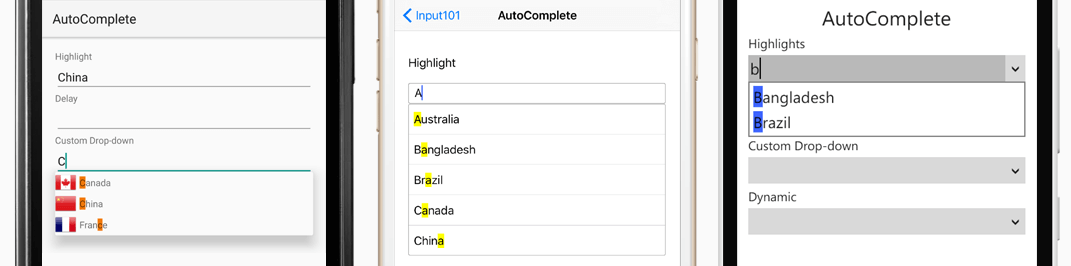 Input_AutoComplete_cropped