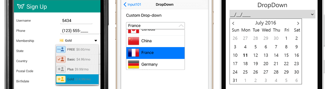 Input_DropDown_cropped