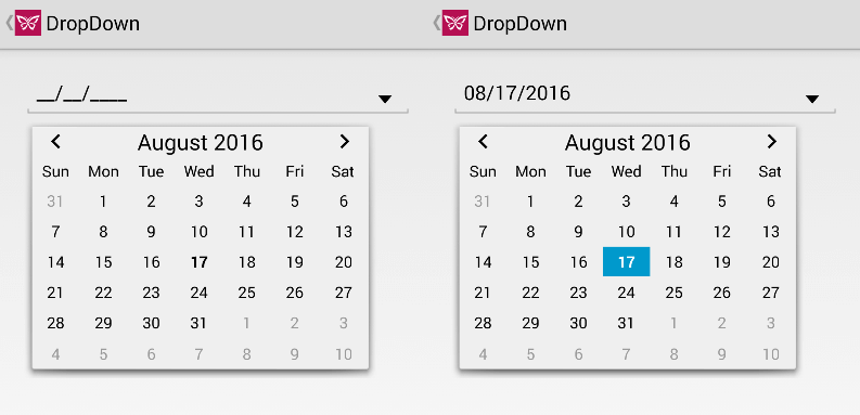 How to Create a Custom DropDown Control in Xamarin Forms | ComponentOne