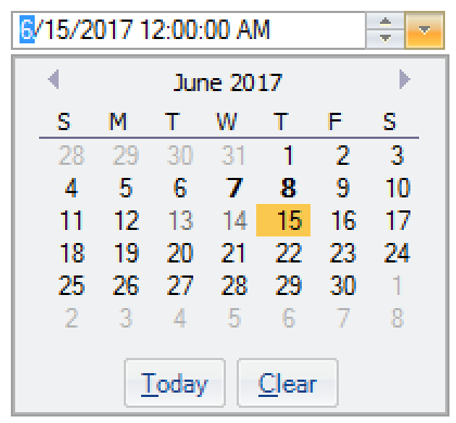 DateEditor for WinForms